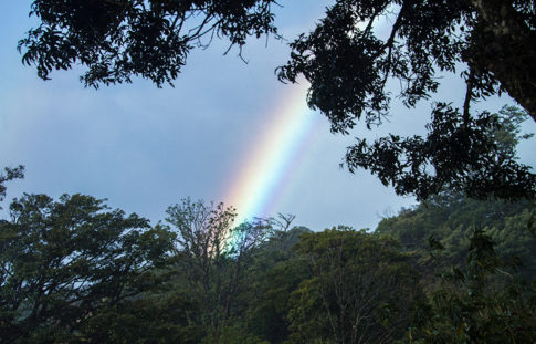 Costa Rican Rainbow -Picture of Costa Rican Rainbow by Nadine Levin Photography