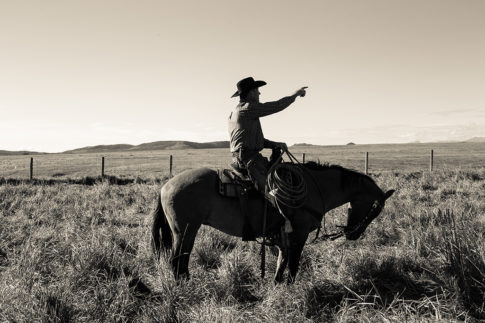 Western picture of 'Heading That Way ' by Nadine Levin Photography