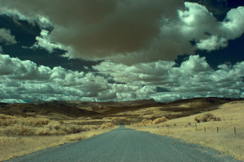 Infrared picture of 'Road Less Travelled ' by Nadine Levin Photography