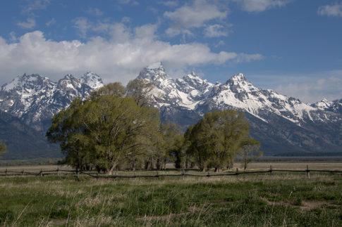 Landscape Picture of Teton Scene by Nadine Levin Photography
